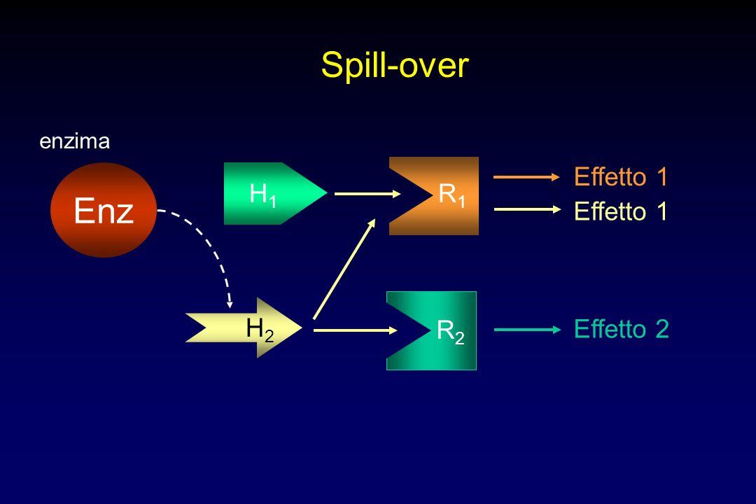 Spill-over H1H1 R1R1 Effetto 1 H2H2 R2R2 Effetto 2 Effetto 1 Enz enzima