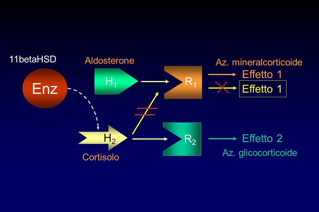 H1H1 R1R1 Effetto 1 H2H2 R2R2 Effetto 2 Aldosterone Cortisolo Az. mineralcorticoide Effetto 1 Az. glicocorticoide Enz 11betaHSD