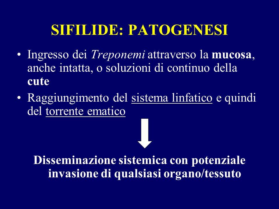 SIFILIDE: PATOGENESI Ingresso dei Treponemi attraverso la mucosa, anche intatta, o soluzioni di continuo della cute Raggiungimento del sistema linfatico e quindi del torrente ematico Disseminazione sistemica con potenziale invasione di qualsiasi organo/tessuto