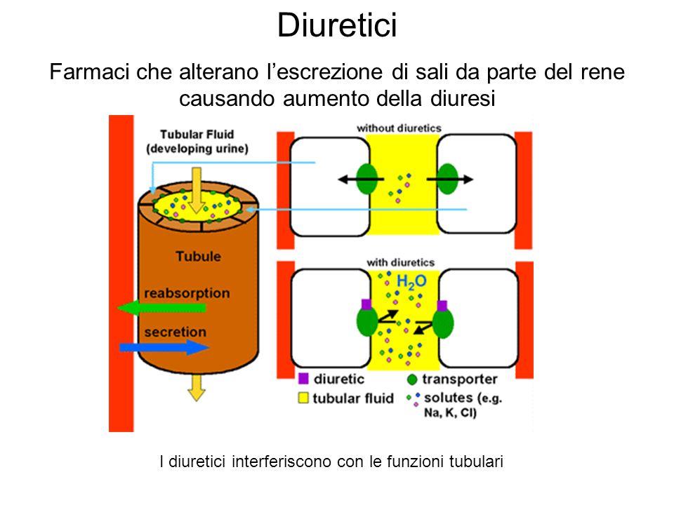 Diuretici Farmaci che alterano lescrezione di sali da parte del rene causando aumento della diuresi I diuretici interferiscono con le funzioni tubular