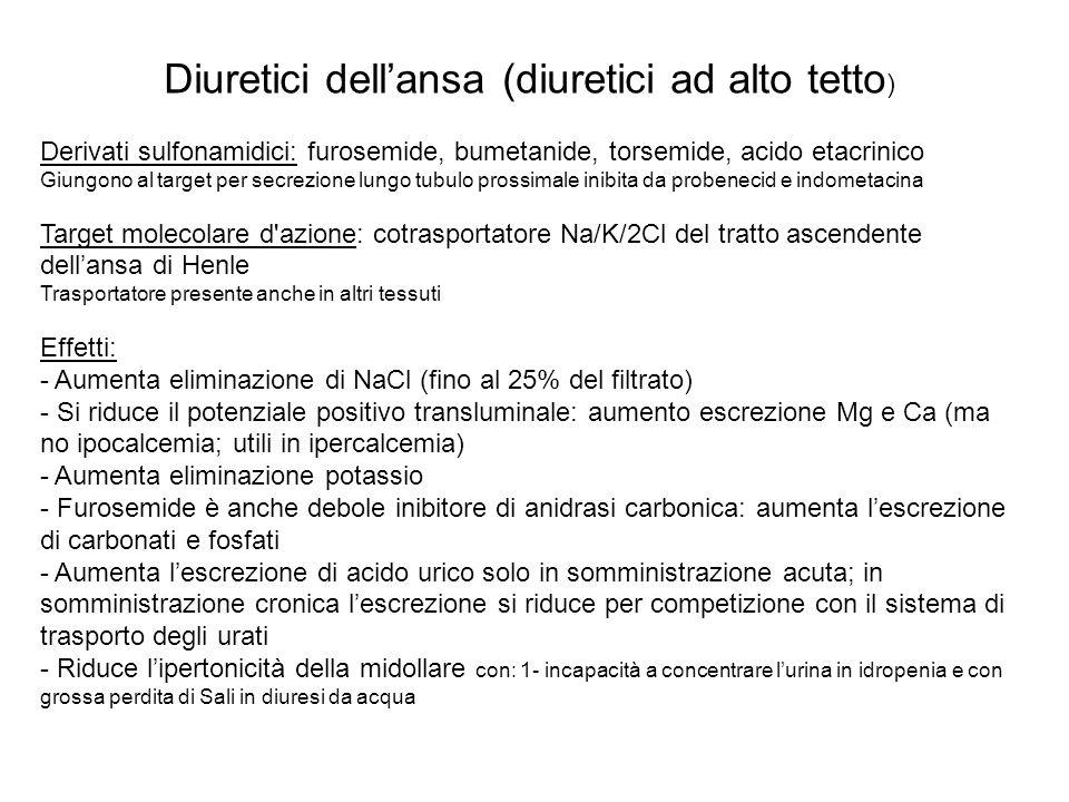 Diuretici dellansa (diuretici ad alto tetto ) Derivati sulfonamidici: furosemide, bumetanide, torsemide, acido etacrinico Giungono al target per secre