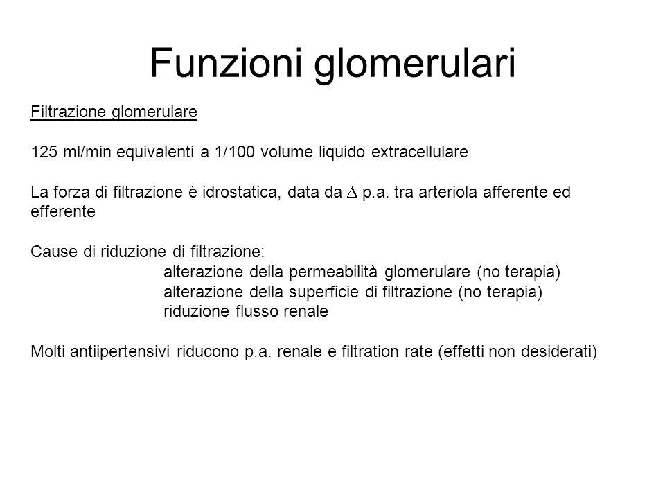 Funzioni glomerulari Filtrazione glomerulare 125 ml/min equivalenti a 1/100 volume liquido extracellulare La forza di filtrazione è idrostatica, data