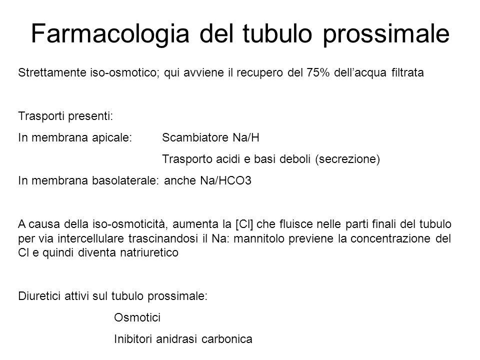Farmacologia del tubulo prossimale Strettamente iso-osmotico; qui avviene il recupero del 75% dellacqua filtrata Trasporti presenti: In membrana apica
