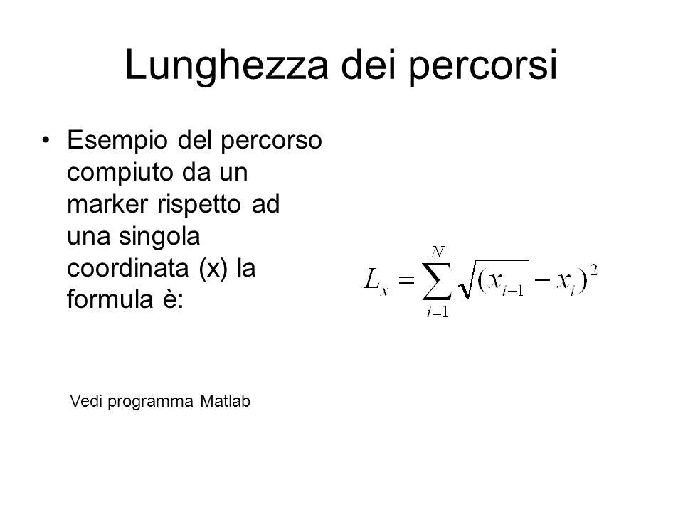 Lunghezza dei percorsi Esempio del percorso compiuto da un marker rispetto ad una singola coordinata (x) la formula è: Vedi programma Matlab