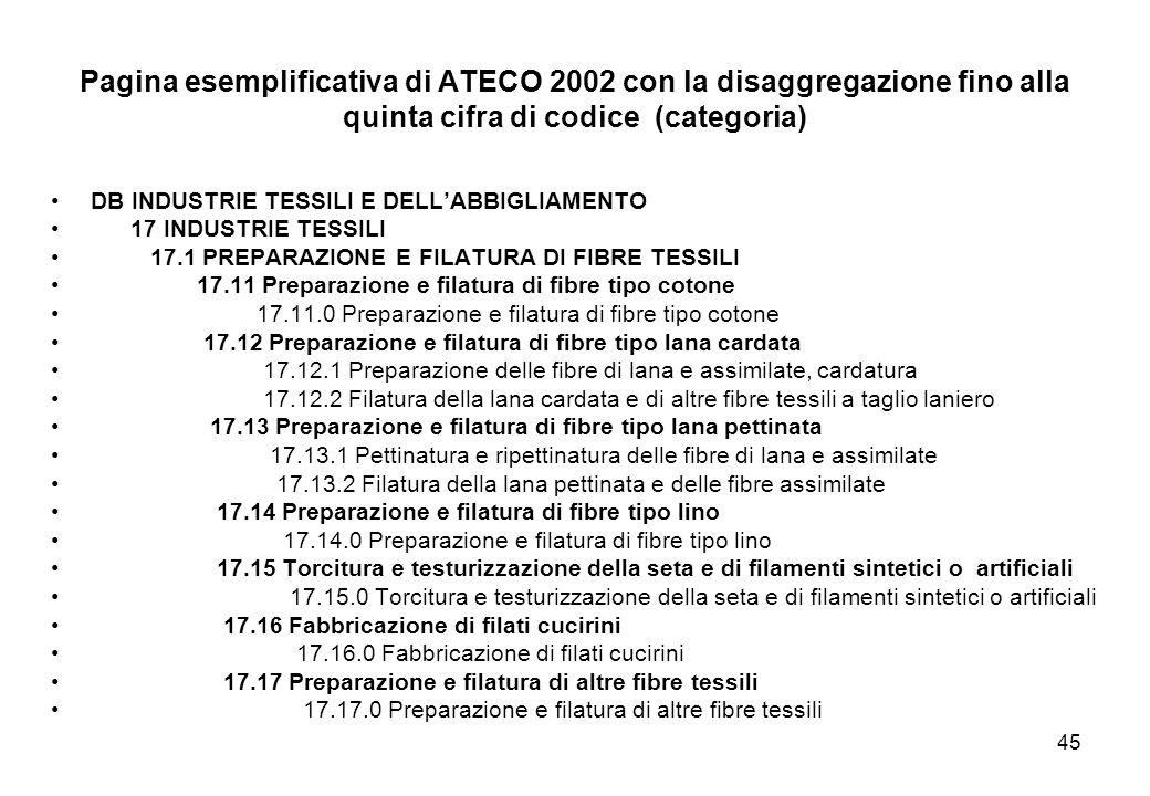 45 Pagina esemplificativa di ATECO 2002 con la disaggregazione fino alla quinta cifra di codice (categoria) DB INDUSTRIE TESSILI E DELLABBIGLIAMENTO 1