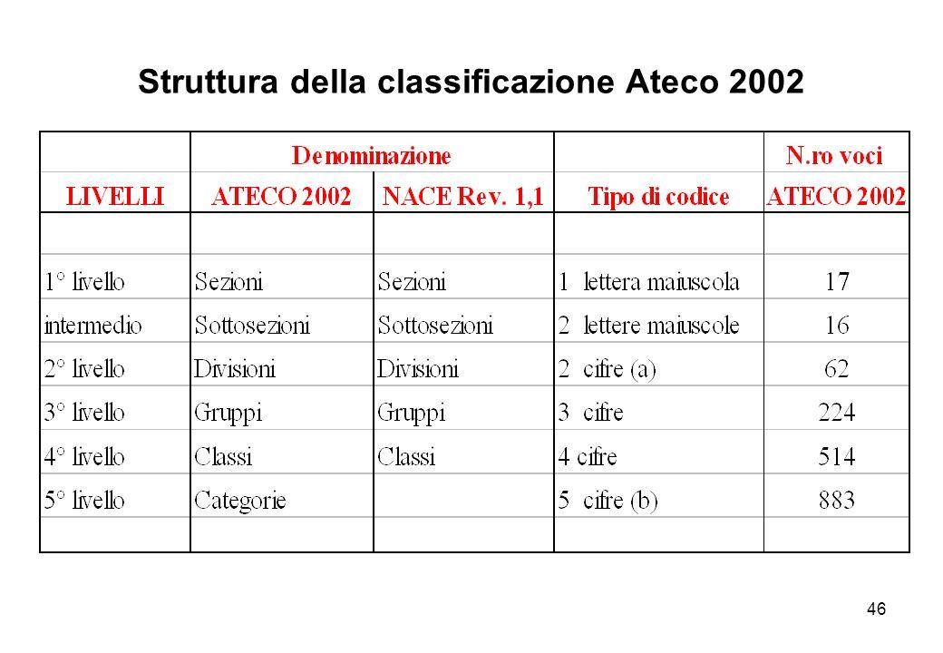 46 Struttura della classificazione Ateco 2002