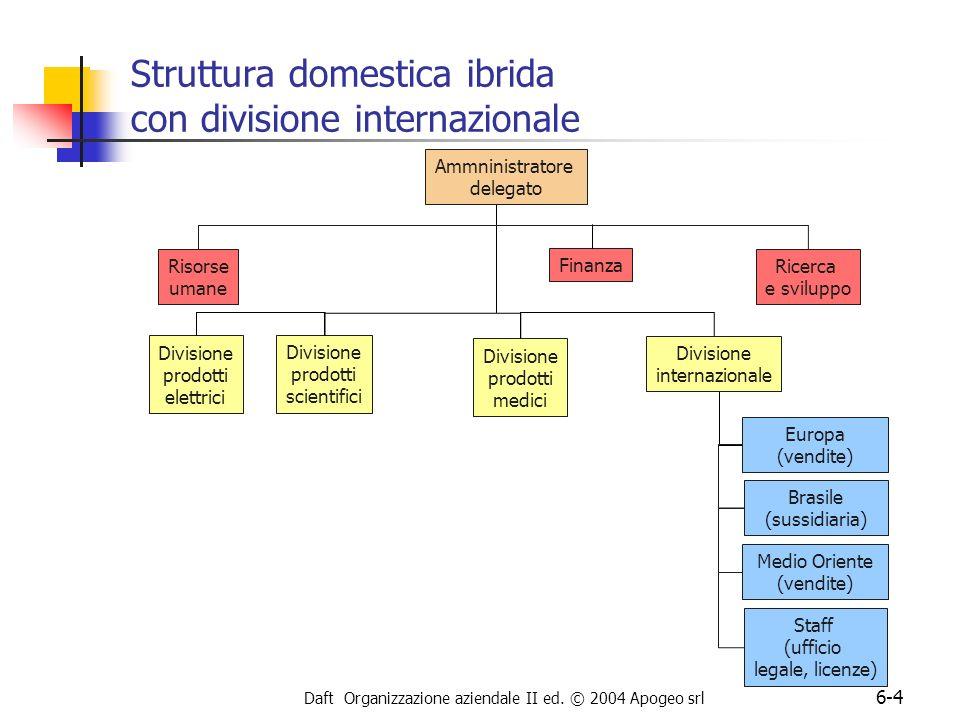 Daft Organizzazione aziendale II ed. © 2004 Apogeo srl 6-4 Struttura domestica ibrida con divisione internazionale Divisione prodotti scientifici Rice