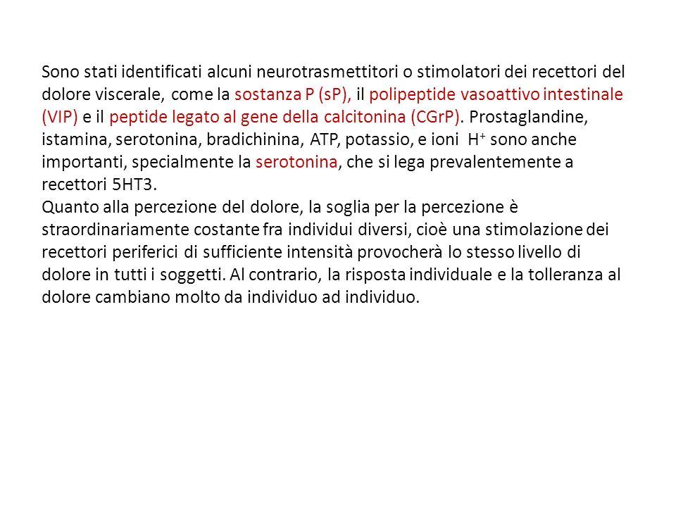 Sono stati identificati alcuni neurotrasmettitori o stimolatori dei recettori del dolore viscerale, come la sostanza P (sP), il polipeptide vasoattivo intestinale (VIP) e il peptide legato al gene della calcitonina (CGrP).