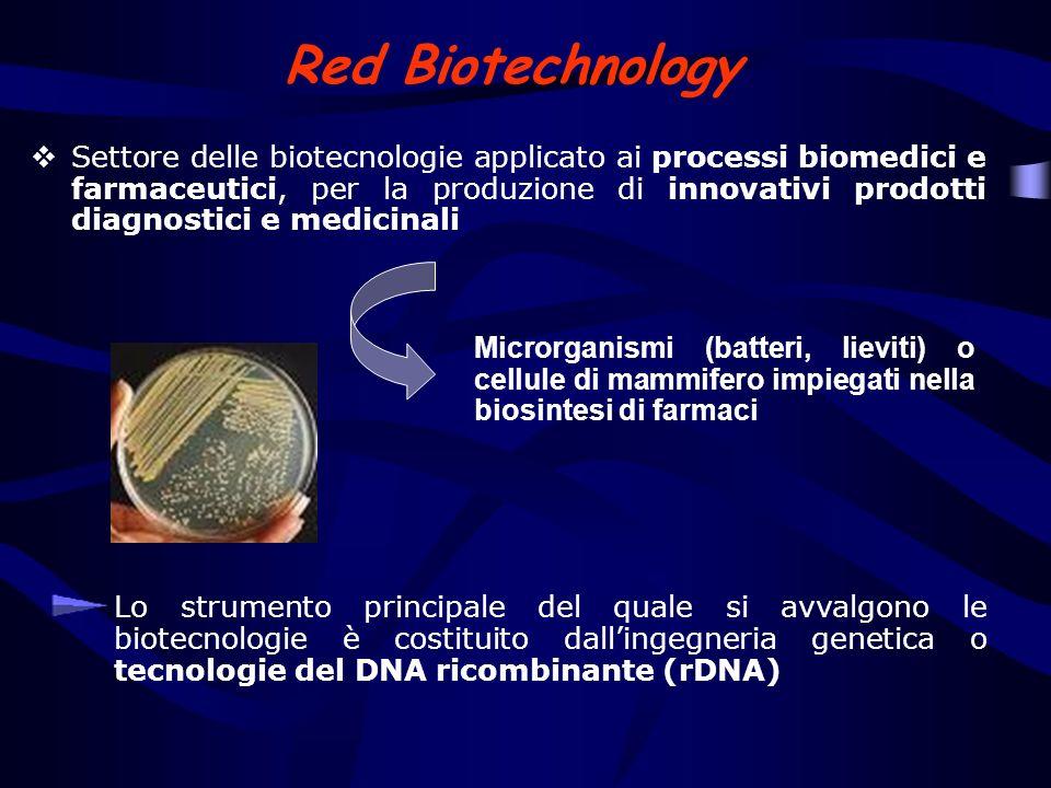 Farmaci biotecnologici ottenuti con la tecnica del rDNA Fattori della coagulazione del sangue Agenti trombolitici e anticoagulanti Ormoni (insulina, glucagone, gonadotropine) Fattori ematopoietici (eritropoietina, fattori stimolanti le colonie) Interferoni Enzimi terapeutici Anticorpi monoclonali Vaccini Linsulina umana è stata la prima proteina umana ricombinante terapeutica ad essere stata approvata dalla FDA (Genentech e Eli Lilly, 1982)