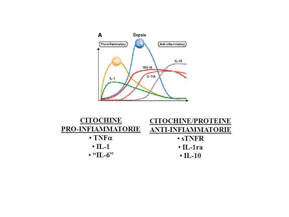CITOCHINE PRO-INFIAMMATORIE TNF IL-1 IL-6 CITOCHINE/PROTEINE ANTI-INFIAMMATORIE sTNFR IL-1ra IL-10