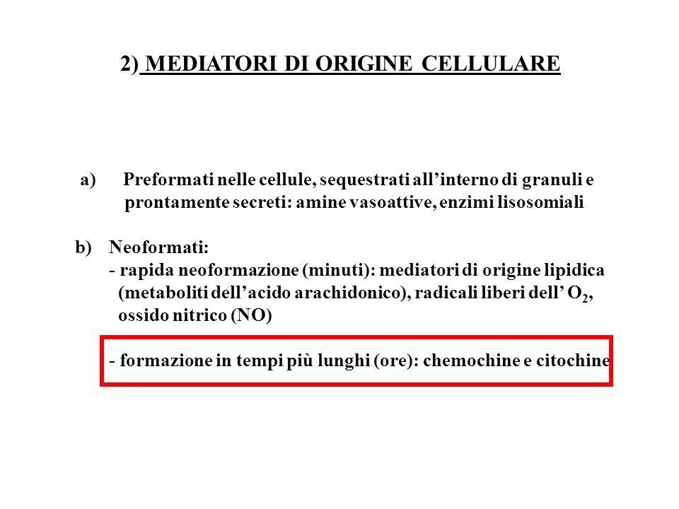 a) Preformati nelle cellule, sequestrati allinterno di granuli e prontamente secreti: amine vasoattive, enzimi lisosomiali b)Neoformati: - rapida neof