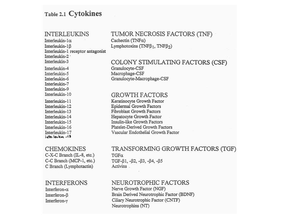 RUOLO FISIOLOGICO Sono prodotte da diversi tipi cellulari ed hanno la funzione di mediatori di diversi processi fisiologici: ematopoiesi risposte immuni difese dellospite contro infezioni da virus e da parassiti risposte infiammatorie e della febbre funzioni delle cellule citotossiche e dei fagociti riparazione delle ferite rimodellamento dei tessuti metabolismo cellulare proliferazione cellulare differenziazione cellulare