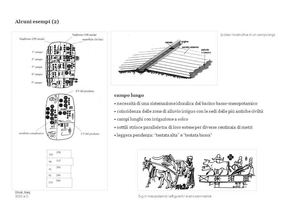 Alcuni esempi (2) Uruk, Iraq 3000 a.C. campo lungo necessità di una sistemazione idraulica del bacino basso-mesopotamico coincidenza delle zone di all