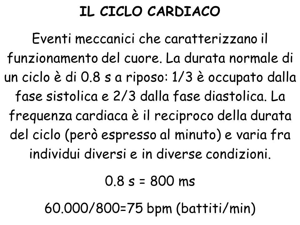 IL CICLO CARDIACO Eventi meccanici che caratterizzano il funzionamento del cuore. La durata normale di un ciclo è di 0.8 s a riposo: 1/3 è occupato da