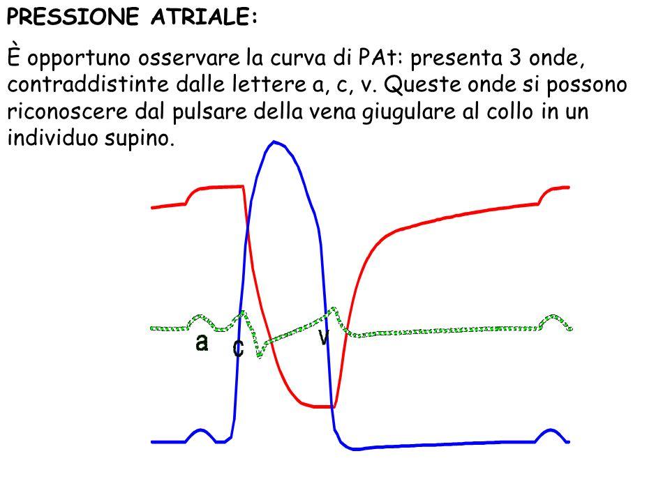 PRESSIONE ATRIALE: È opportuno osservare la curva di PAt: presenta 3 onde, contraddistinte dalle lettere a, c, v. Queste onde si possono riconoscere d