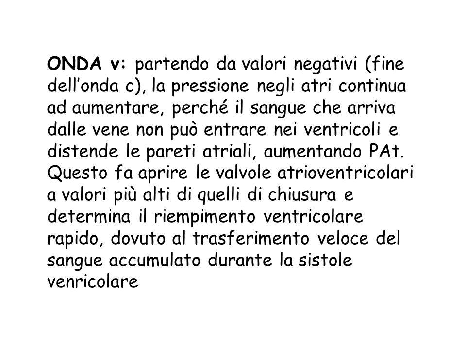 ONDA v: partendo da valori negativi (fine dellonda c), la pressione negli atri continua ad aumentare, perché il sangue che arriva dalle vene non può e