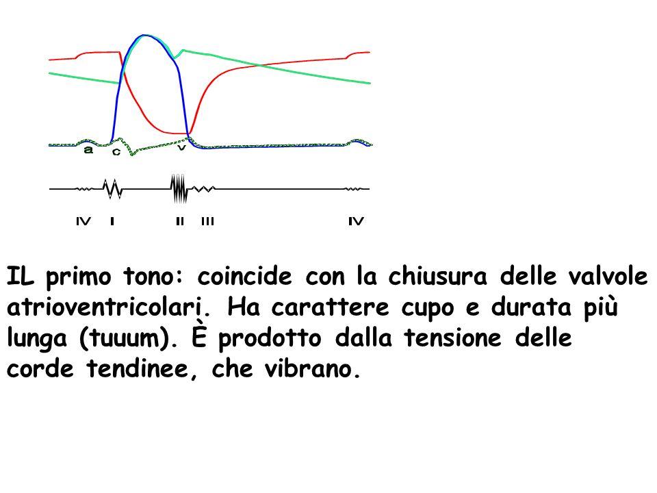 IL primo tono: coincide con la chiusura delle valvole atrioventricolari. Ha carattere cupo e durata più lunga (tuuum). È prodotto dalla tensione delle