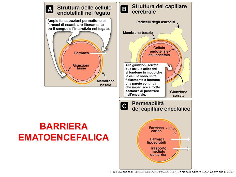 BARRIERA PLACENTARE Il termine barriera placentare potrebbe far pensare che i farmaci attraversano difficilmente la placenta, in realtà a parte poche eccezioni tutti i farmaci passano la placenta e così prima lembrione e poi il feto sono esposti ai farmaci e ai loro effetti.