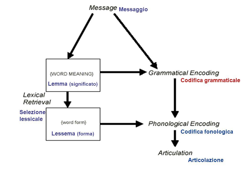 Codifica grammaticale Codifica fonologica Articolazione Selezione lessicale Messaggio Lessema (forma) Lemma (significato)