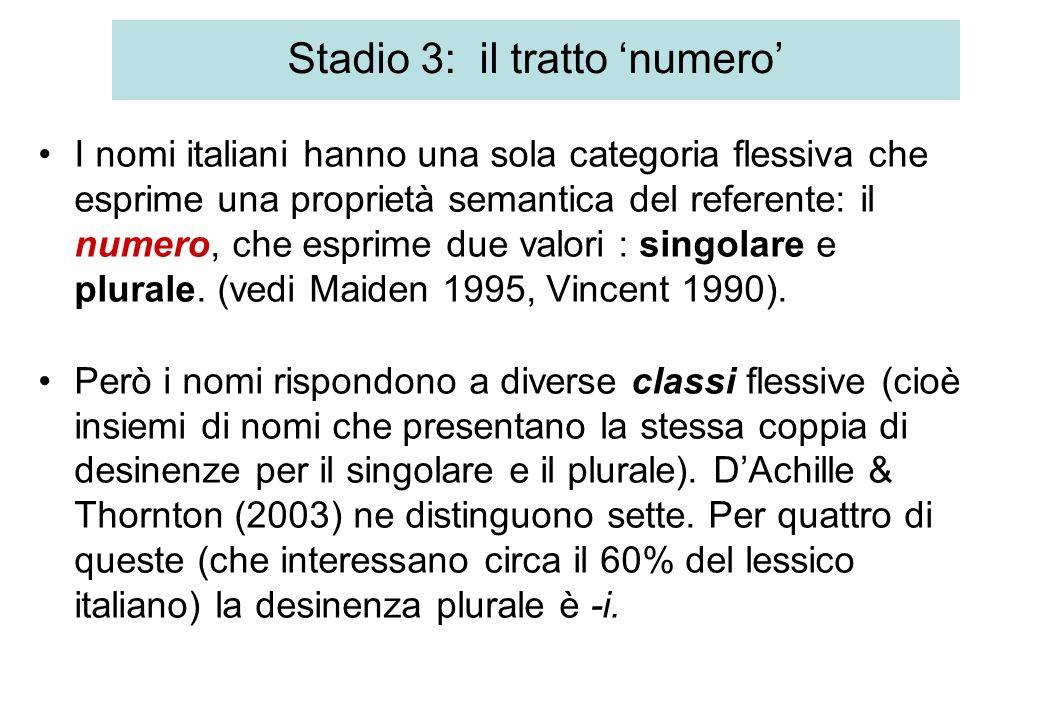 Stadio 3: il tratto numero I nomi italiani hanno una sola categoria flessiva che esprime una proprietà semantica del referente: il numero, che esprime