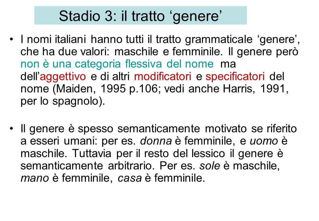 Stadio 3: il tratto genere I nomi italiani hanno tutti il tratto grammaticale genere, che ha due valori: maschile e femminile. Il genere però non è un
