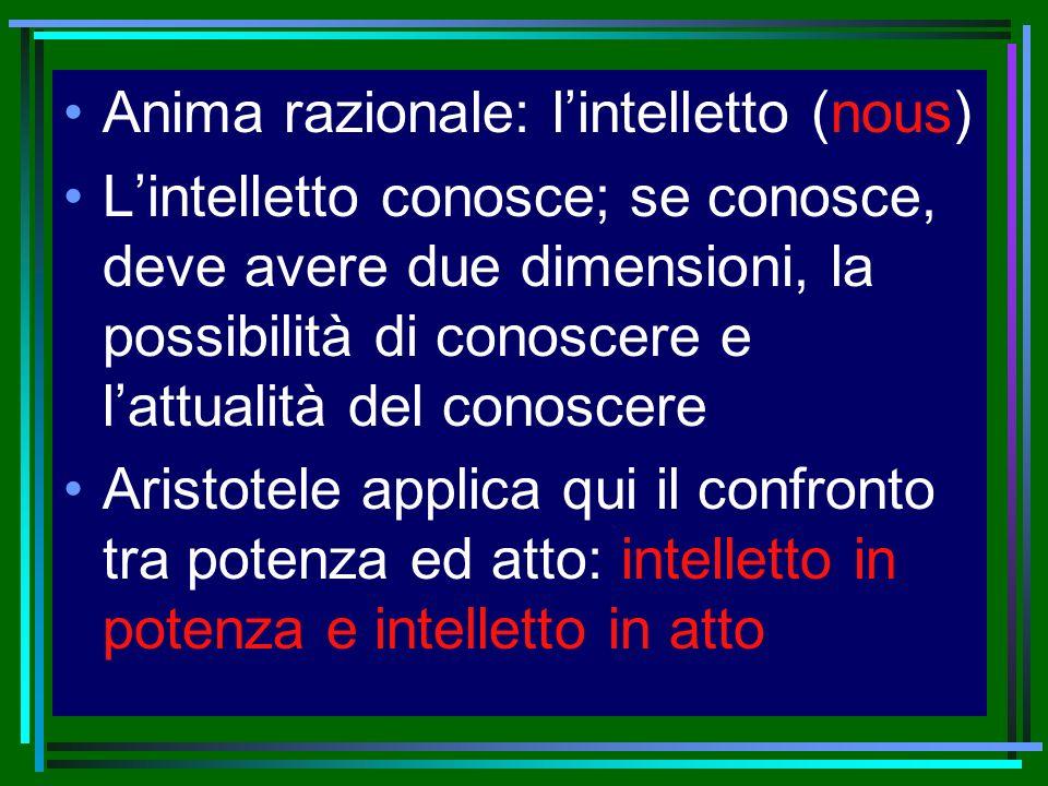 Anima razionale: lintelletto (nous) Lintelletto conosce; se conosce, deve avere due dimensioni, la possibilità di conoscere e lattualità del conoscere