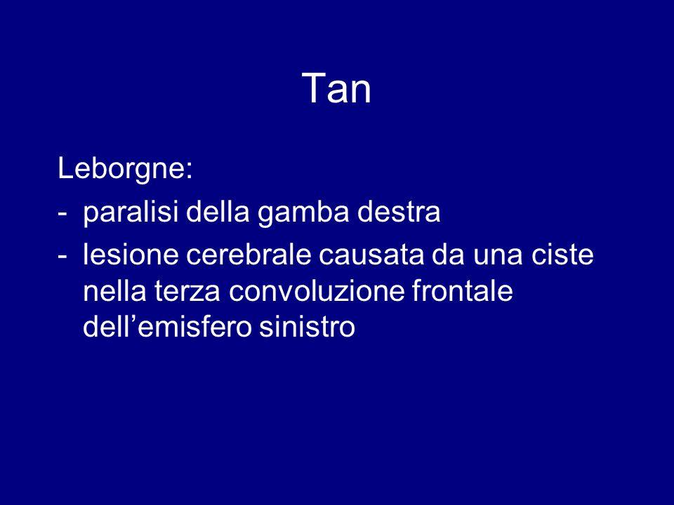 Il cervello di Tan