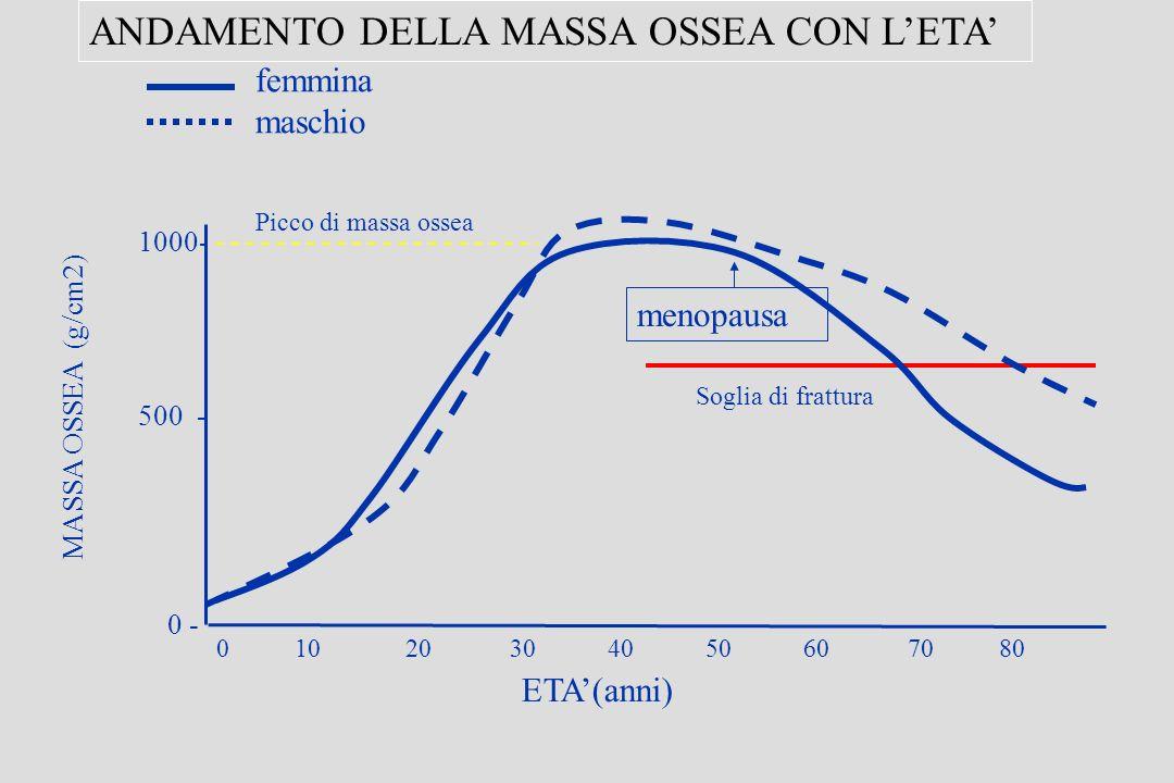 0 10 20 30 40 50 60 70 80 MASSA OSSEA (g/cm2) ETA(anni) 1000- 500 - 0 - ANDAMENTO DELLA MASSA OSSEA CON LETA Picco di massa ossea femmina maschio menopausa Soglia di frattura