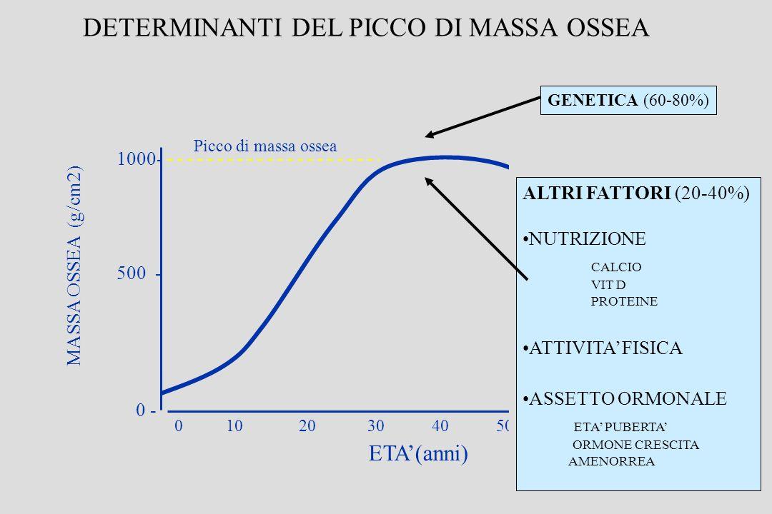 0 10 20 30 40 50 60 MASSA OSSEA (g/cm2) ETA(anni) 1000- 500 - 0 - Picco di massa ossea DETERMINANTI DEL PICCO DI MASSA OSSEA GENETICA (60-80%) ALTRI FATTORI (20-40%) NUTRIZIONE CALCIO VIT D PROTEINE ATTIVITA FISICA ASSETTO ORMONALE ETA PUBERTA ORMONE CRESCITA AMENORREA