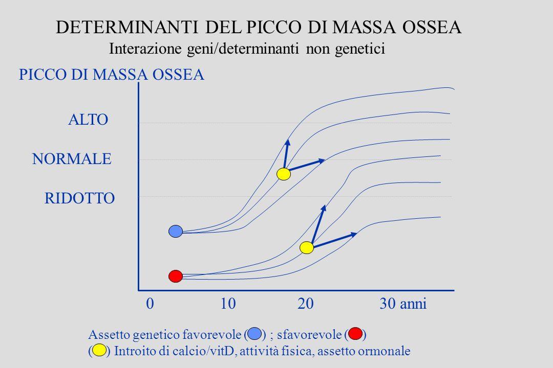 PICCO DI MASSA OSSEA 0 10 20 30 anni DETERMINANTI DEL PICCO DI MASSA OSSEA Interazione geni/determinanti non genetici Assetto genetico favorevole ( )