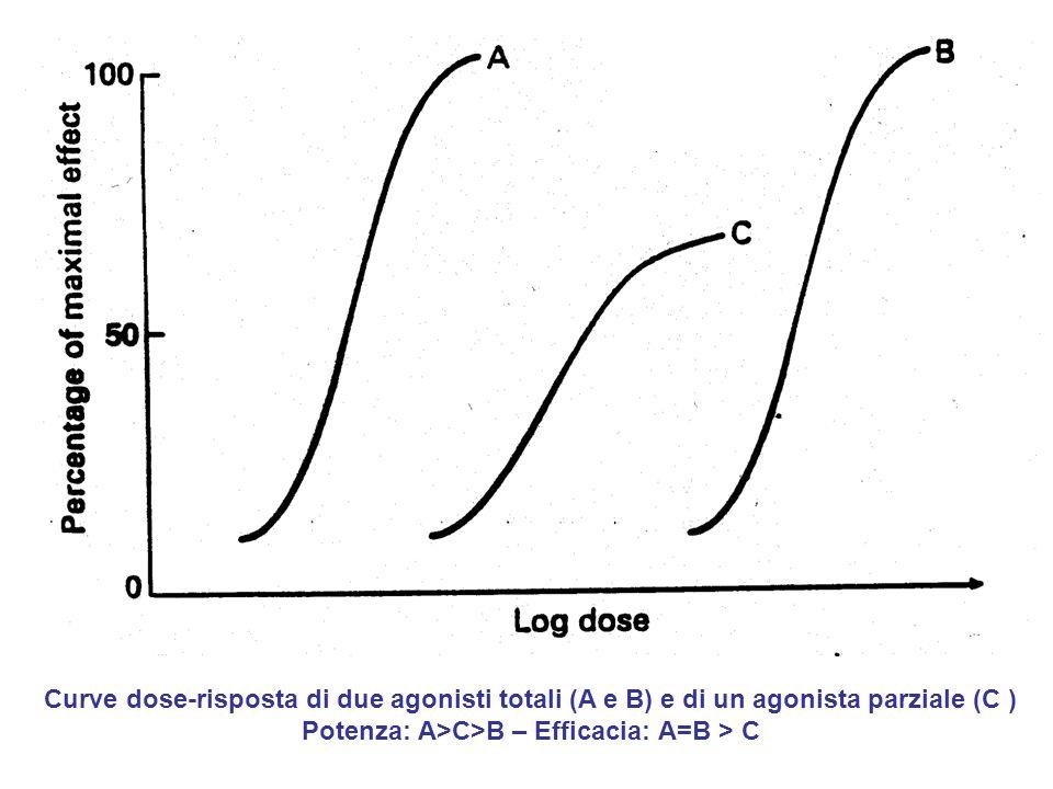 Curve dose-risposta di due agonisti totali (A e B) e di un agonista parziale (C ) Potenza: A>C>B – Efficacia: A=B > C