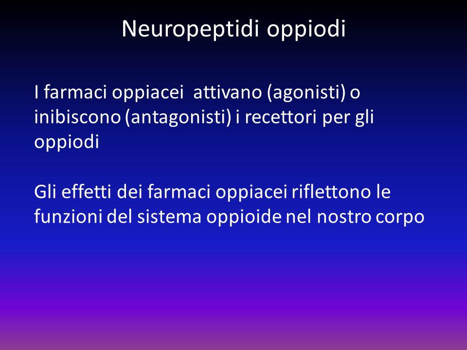 Neuropeptidi oppiodi I farmaci oppiacei attivano (agonisti) o inibiscono (antagonisti) i recettori per gli oppiodi Gli effetti dei farmaci oppiacei ri