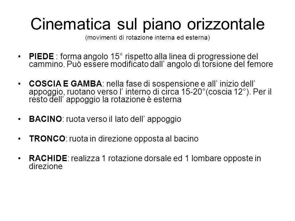 Cinematica sul piano orizzontale (movimenti di rotazione interna ed esterna) PIEDE : forma angolo 15° rispetto alla linea di progressione del cammino.