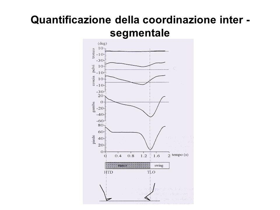 Quantificazione della coordinazione inter - segmentale