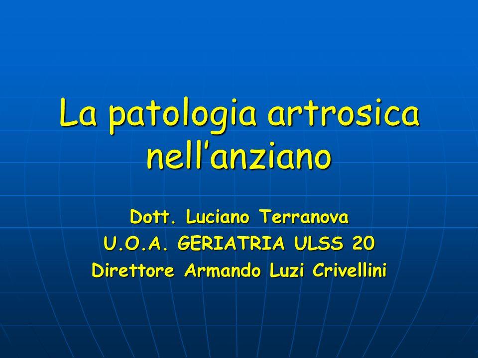 La patologia artrosica nellanziano Dott. Luciano Terranova U.O.A. GERIATRIA ULSS 20 Direttore Armando Luzi Crivellini