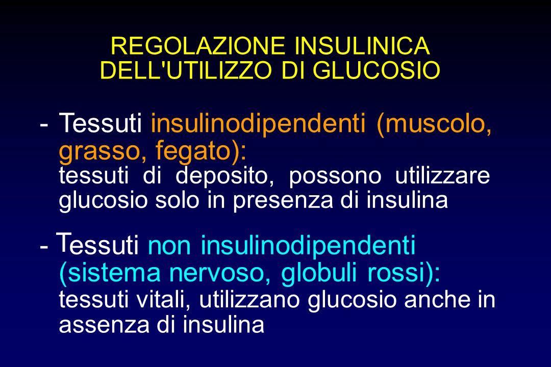 REGOLAZIONE INSULINICA DELL'UTILIZZO DI GLUCOSIO -Tessuti insulinodipendenti (muscolo, grasso, fegato): tessuti di deposito, possono utilizzare glucos