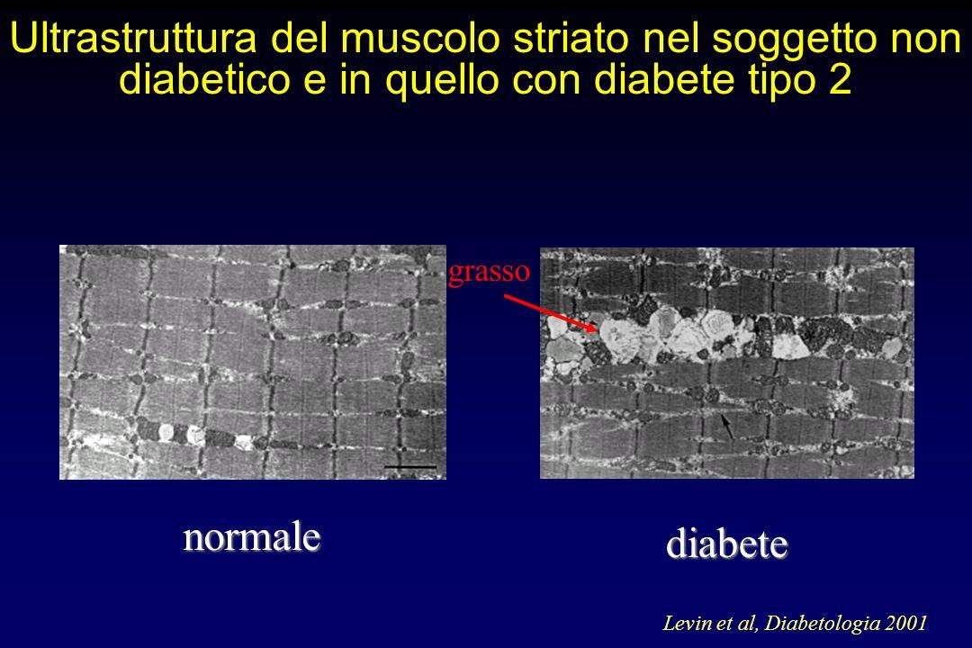 DIABETE MELLITO Tipo 1 : carenza assoluta di insulina - esordio in genere in età giovane - peso corporeo in genere normale Tipo 2 : carenza relativa + inefficacia dellinsulina (insulinoresistenza) - esordio in genere in età adulta/senile - spesso associato a obesità