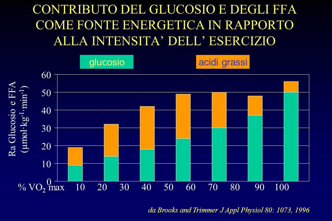 Glucosio Lattato Corpi chetonici