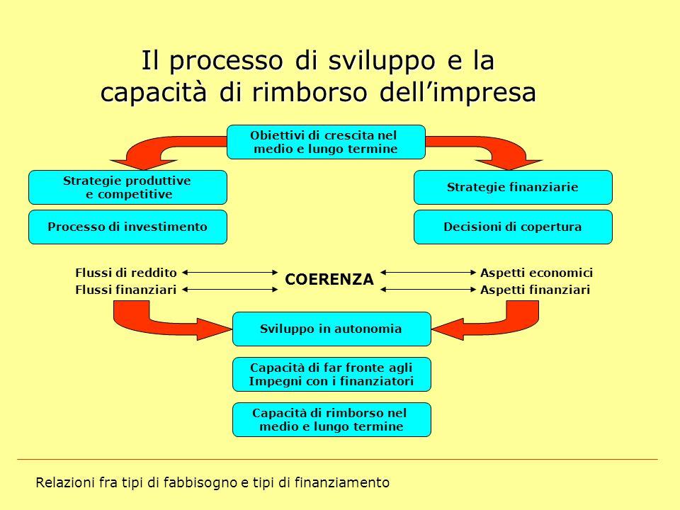 Relazioni fra tipi di fabbisogno e tipi di finanziamento Il processo di sviluppo e la capacità di rimborso dellimpresa Obiettivi di crescita nel medio