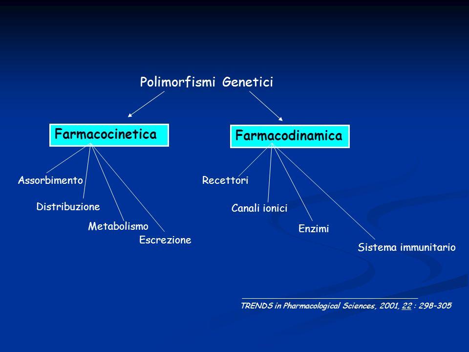 Polimorfismi Genetici Farmacodinamica Farmacocinetica Recettori Canali ionici Enzimi Sistema immunitario Assorbimento Distribuzione Metabolismo Escrez