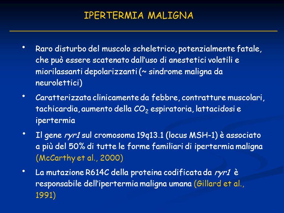 IPERTERMIA MALIGNA Caratterizzata clinicamente da febbre, contratture muscolari, tachicardia, aumento della CO 2 espiratoria, lattacidosi e ipertermia