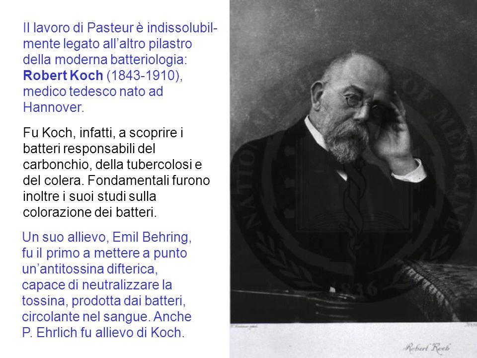 Il lavoro di Pasteur è indissolubil- mente legato allaltro pilastro della moderna batteriologia: Robert Koch (1843-1910), medico tedesco nato ad Hannover.