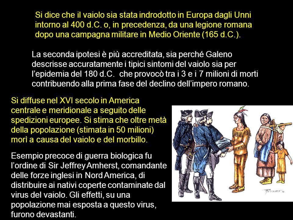 Si dice che il vaiolo sia stata indrodotto in Europa dagli Unni intorno al 400 d.C.