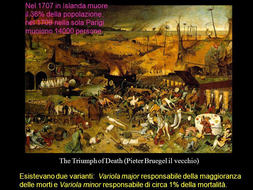 Alla fine del XVII secolo in Europa si assiste ad un declino della peste bubbonica, a seguito degli interventi di sanificazione am- bientale, mentre una mutazione del virus del vaiolo produce un ceppo più virulento.