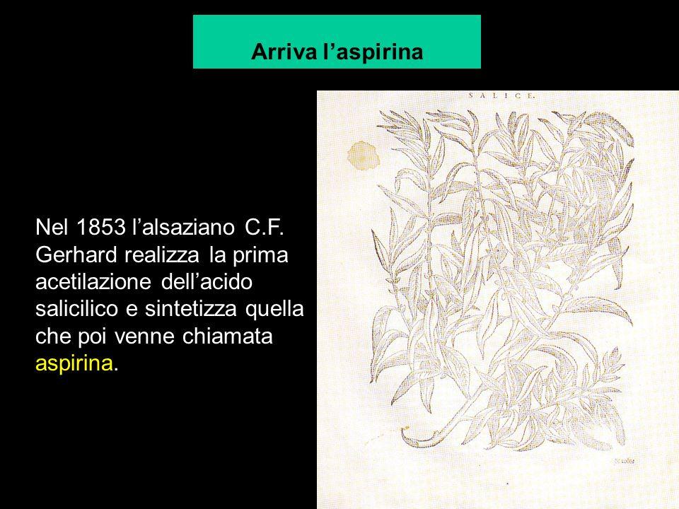 Nel 1853 lalsaziano C.F.