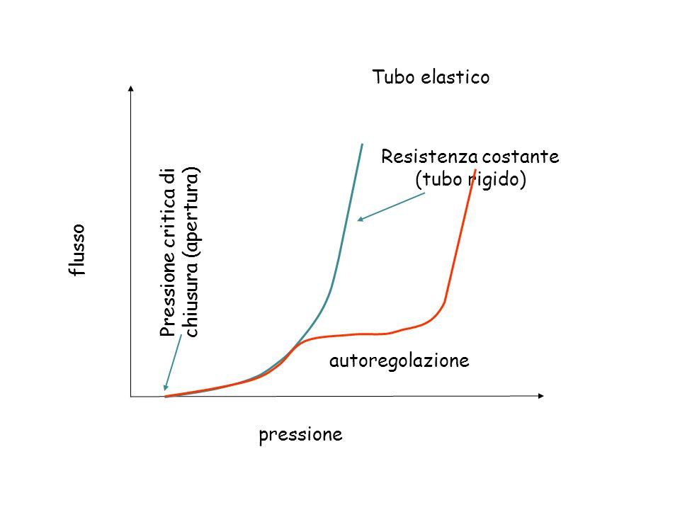 flusso pressione Tubo elastico Pressione critica di chiusura (apertura) Resistenza costante (tubo rigido) autoregolazione