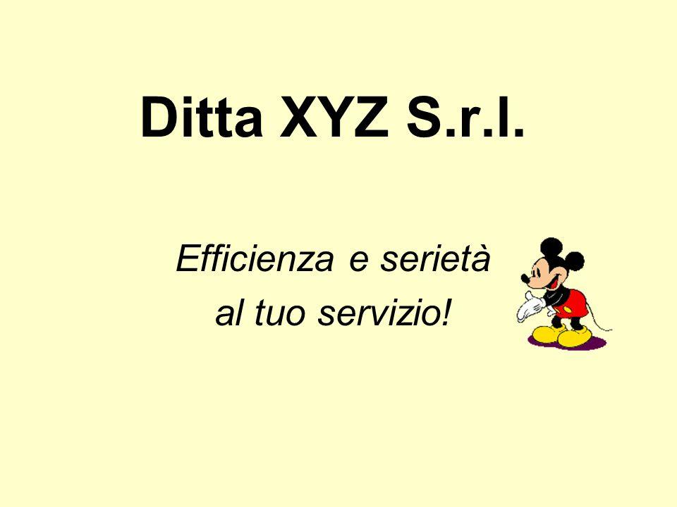 Ditta XYZ S.r.l. Efficienza e serietà al tuo servizio!