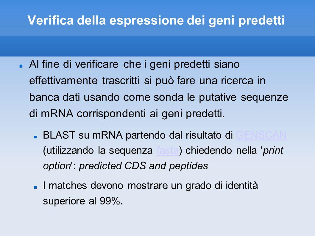 Verifica della espressione dei geni predetti Al fine di verificare che i geni predetti siano effettivamente trascritti si può fare una ricerca in banca dati usando come sonda le putative sequenze di mRNA corrispondenti ai geni predetti.