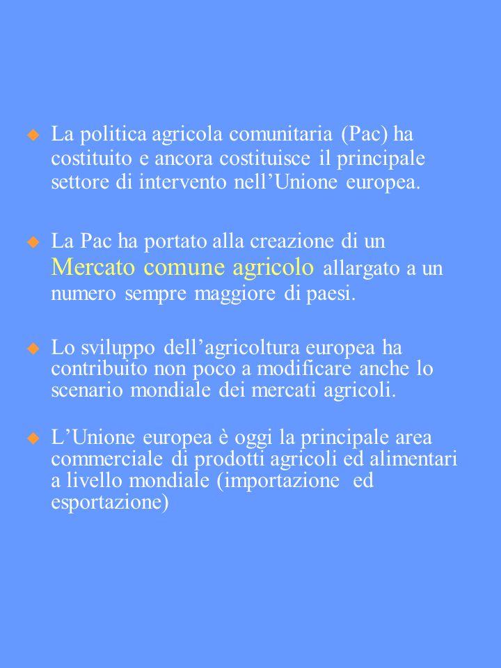 La politica agricola comunitaria (Pac) ha costituito e ancora costituisce il principale settore di intervento nellUnione europea.