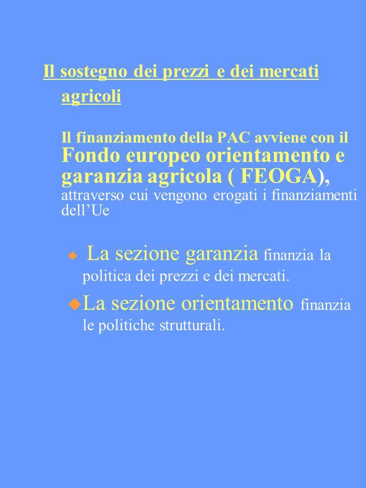 Il sostegno dei prezzi e dei mercati agricoli Il finanziamento della PAC avviene con il Fondo europeo orientamento e garanzia agricola ( FEOGA), attraverso cui vengono erogati i finanziamenti dellUe La sezione garanzia finanzia la politica dei prezzi e dei mercati.